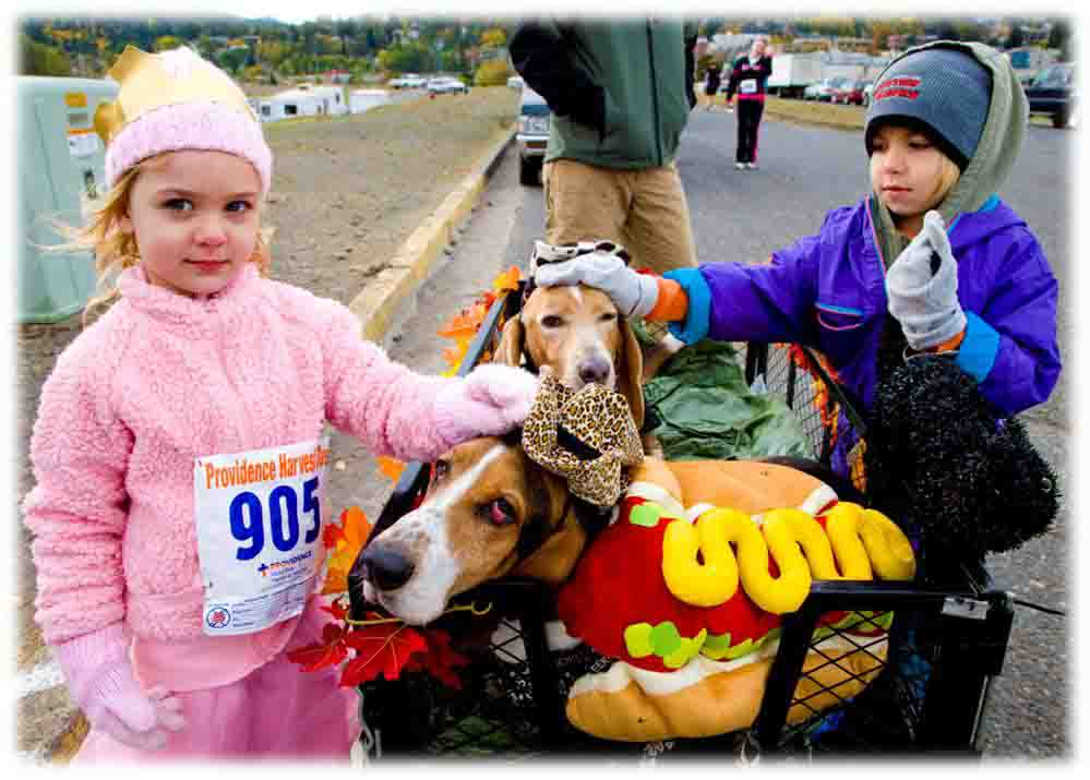 At Hood River Harvest Dash, we dressed up, met cool people and helped benefit a good cause. This is about a year before Dude lost his eyes to glaucoma. Then, we discovered Washington State School for the Blind. Dogs and kids - giving back. Here, Elvis and Dude and friends helped support our local hospital.  Copyright (c) Barb Ayers, DogDiary.org