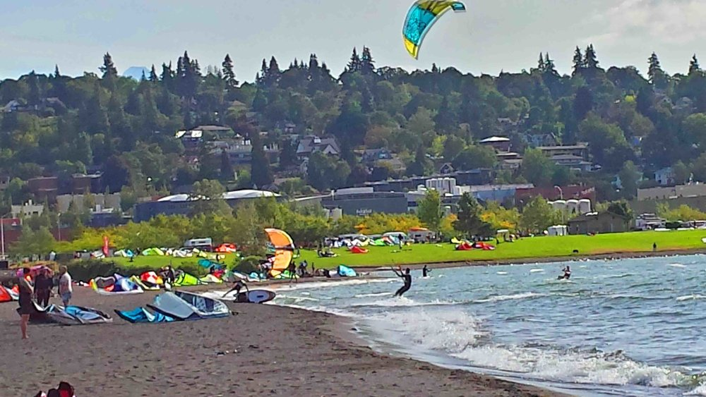 Magical sandbar where people and pets play. In Hood River, Oregon. Photo: (c) Barb Ayers, DogDiary.org