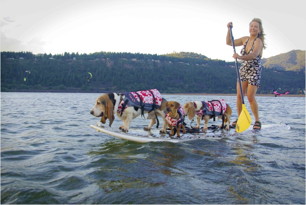 Hang 70 -  Surf Dog Diaries  riders - and writers.  Photo: (c) Barb Ayers, DogDiary.org