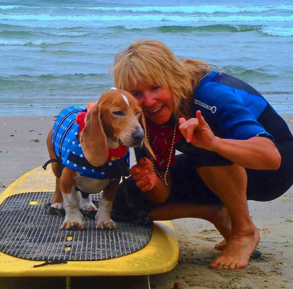 Hang 20!! My rescue dog Dude, 3rd generation Ayers family surf dog, won top surfing honors in the Loews Coronado Surf Dog contest a couple of years in a row. He later went blind - and still, he surfed.  Photo: (c) Barb Ayers, DogDiary.org