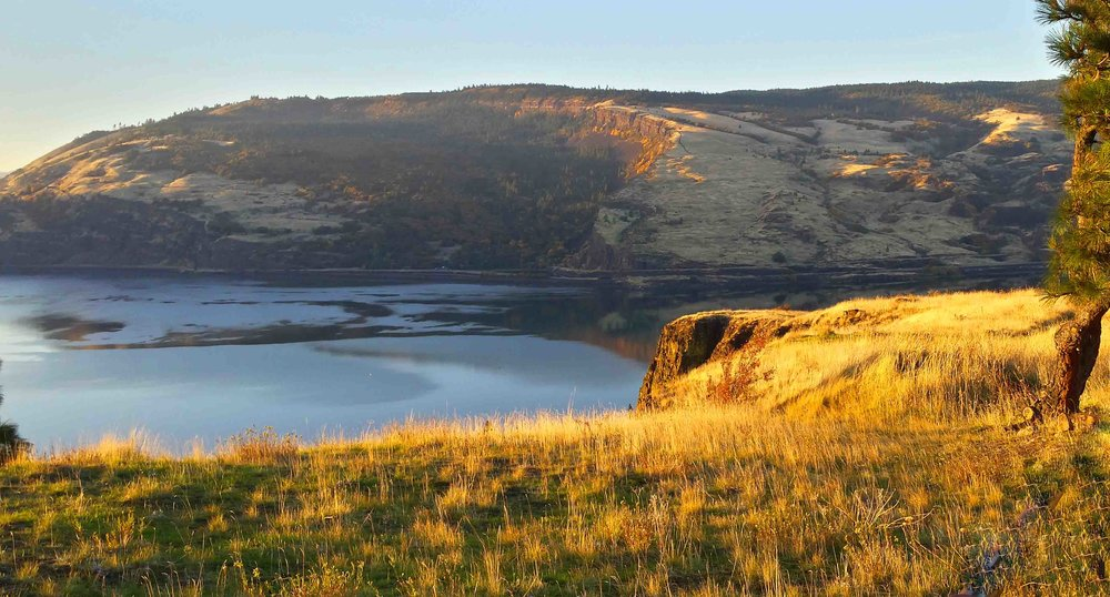 Fall in the Columbia River Gorge.  Photo: (c) Barb Ayers, DogDiary.org