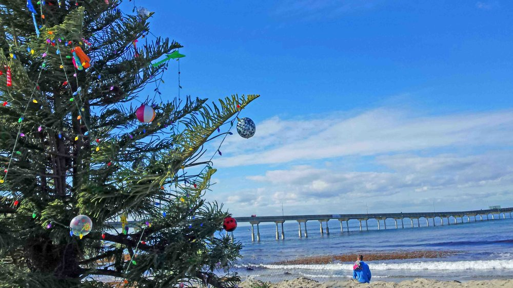 OB pier and the community Christmas tree in the sand.  Photo: (c) Barb Ayers, DogDiary.org