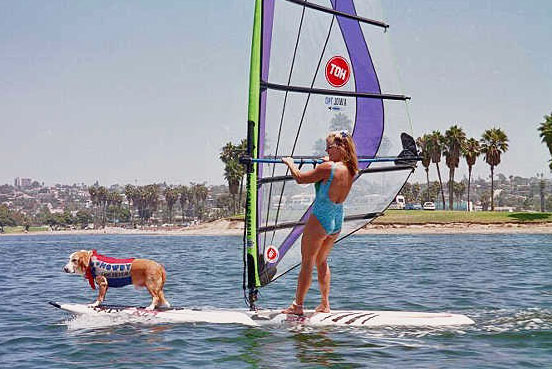 Howdy Doody and my mom, Bartb Ayers, windsurf San Diego's Mission Bay, 1991-2003.                 Photo: (c) Barb Ayers, DogDiary.org