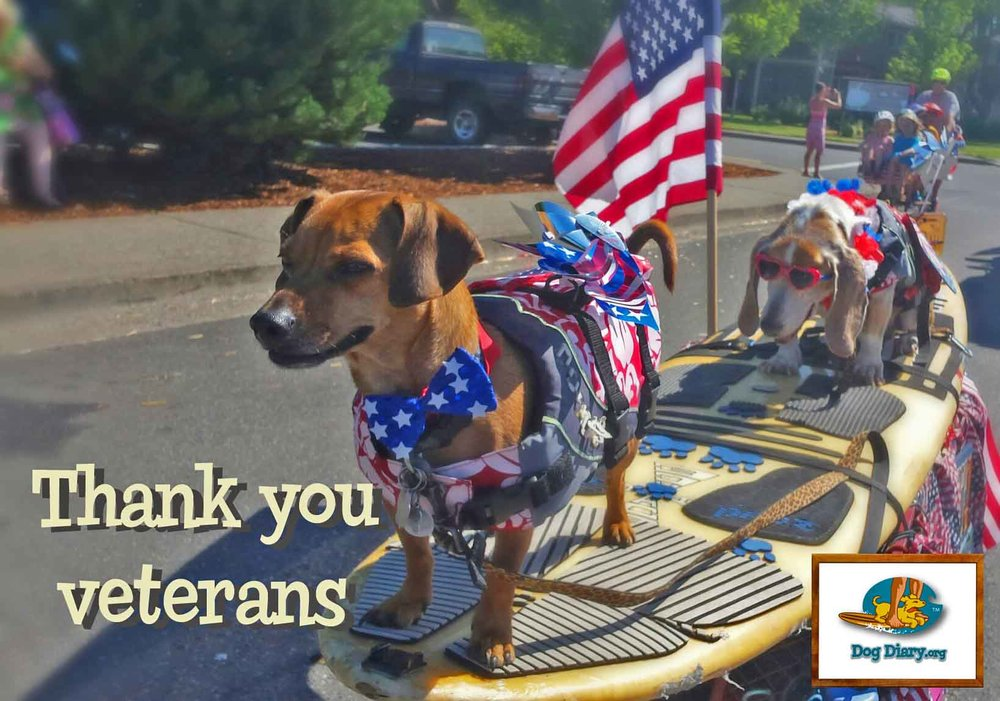 Thank you veterans logo.jpg