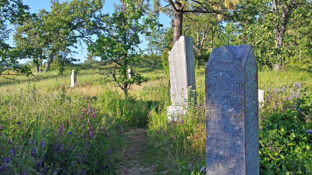 Mosier Pioneer Cemetery - on the trail of Pocket Creek Park/Mosier falls. Photo: (c) Barb Ayers, DogDiary.org