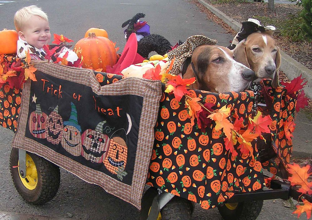 Dogs n friends ….. memories of Halloween's gone by- when my own dog sons Elvis n Dude were still hanging in the surf dog cart - and Motts Erickson was just a little blonde puppy. In Hood River, OR. Photo: (c) Barb Ayers, DogDiary.org