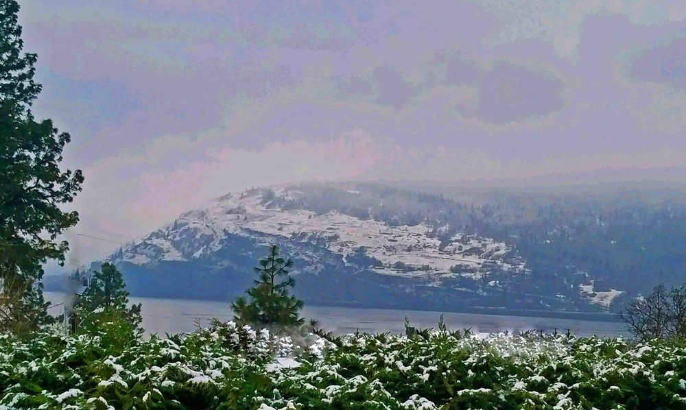 The Gorge cliffs, facing west, from the kitchen window. Looking  down river, toward  Hood River, OR.            Photo: (c) Barb Ayers, DogDiary.org