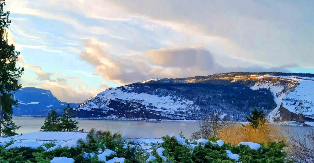 Columbia River Gorge front yard. Photo: (c) Barb Ayers, DogDiary.org