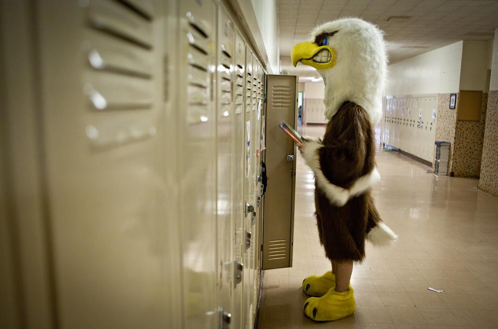 eagle-10.jpg
