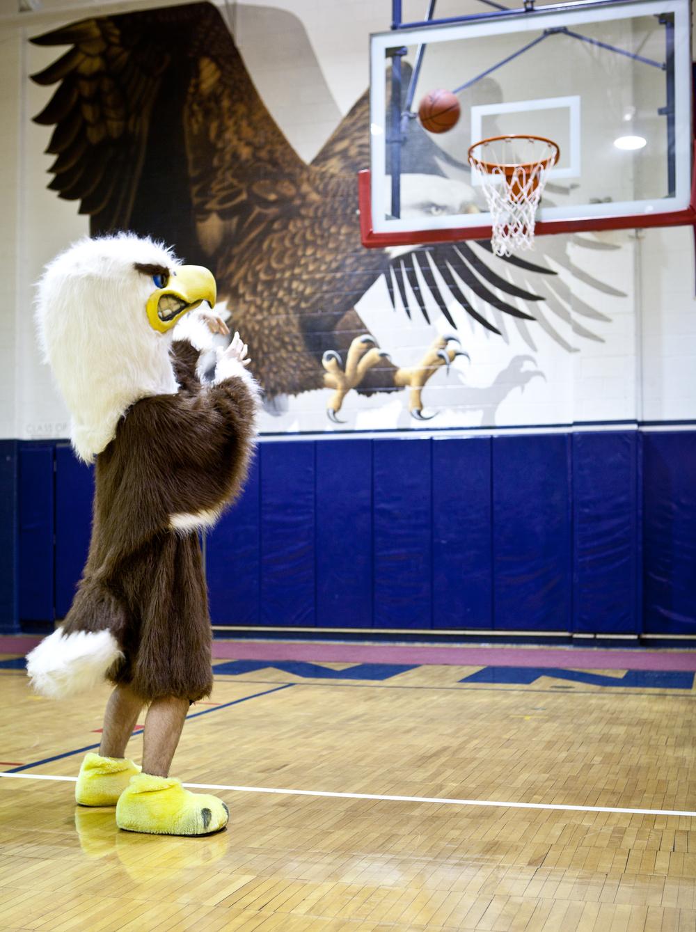 eagle-41.jpg
