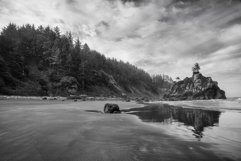 Redwoods-519-Edit.jpg