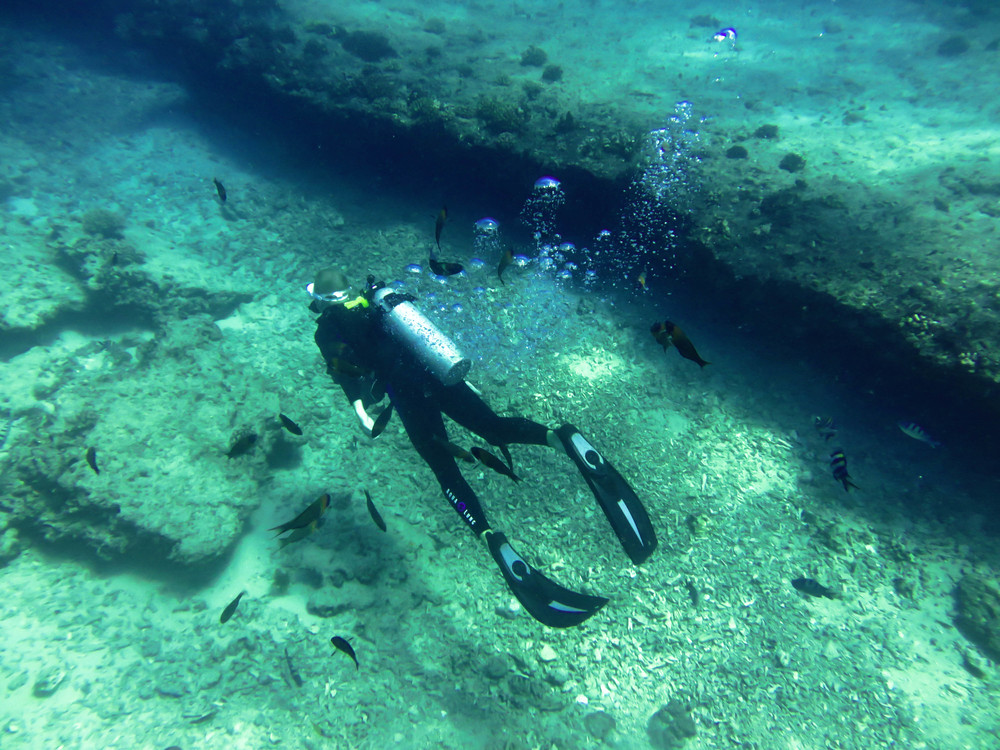 scuba dive waikiki oahu hawaii
