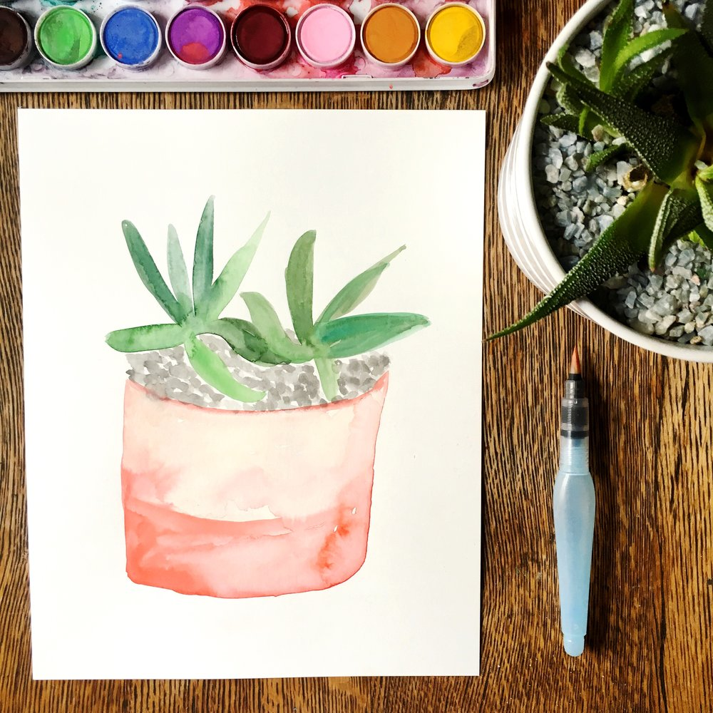 watercolor-succulent