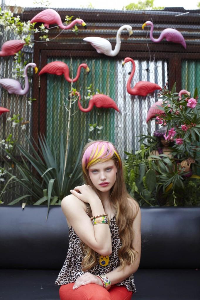 RemyRyan_Flamingos.jpg
