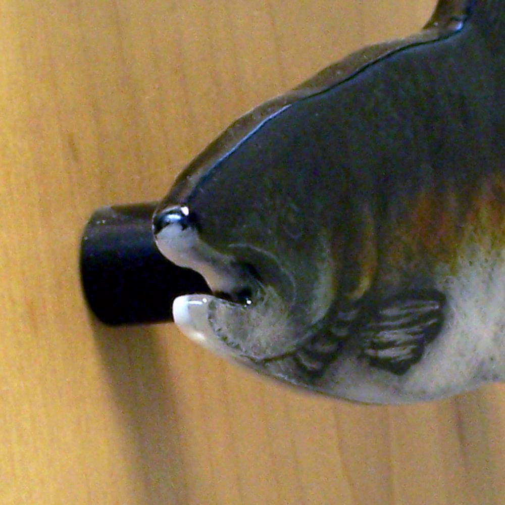 Salmon Handle 2.jpg