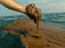 Gulf of Mexico oil spill disaster