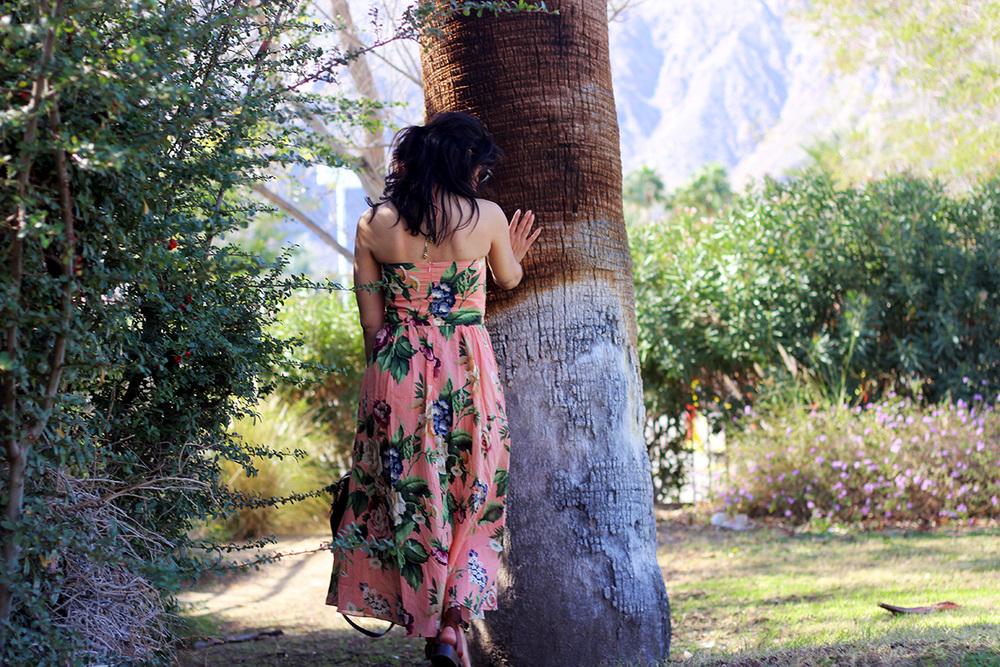 palmsprings3.jpg