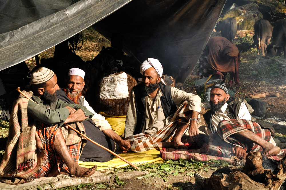 At a forest camp in the Himalayan foothills, Van Gujjar men discuss their plan for moving higher into the mountains, to the alpine meadows where they will spend the summer. They decided - for this one year - to abandon their ancestral meadows and seek other meadows that were higher and more remote.