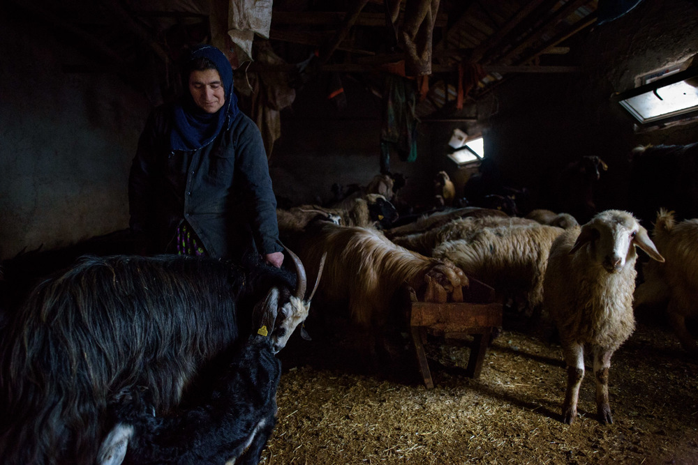 Many people in the Munzur Valley are sheep and goat herders. In winter, livestock spend most of the day in the their stables, which are usually the ground floor of people's homes.