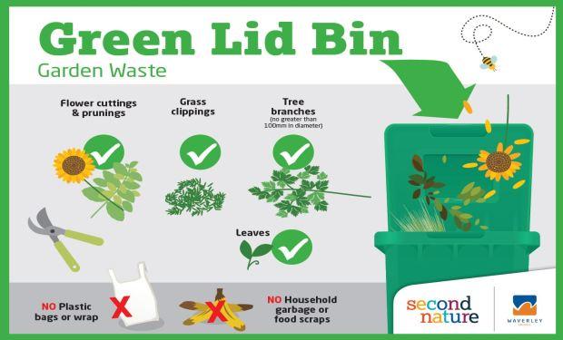 Green Lid Bin