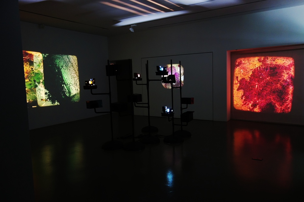 Installation View  Palimpsest  09 May - 29 June 2014