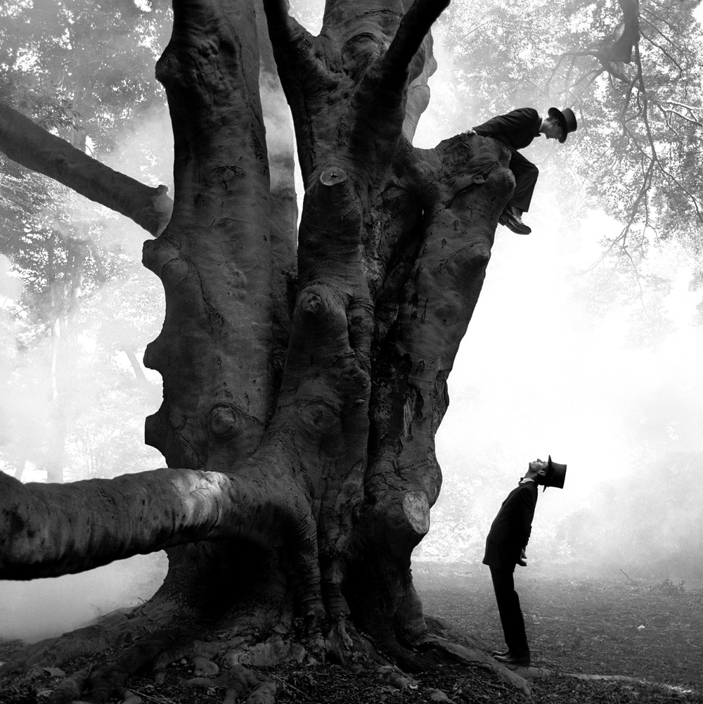 Twins in Tree, Snedens Landing, New York  1999 Archival pigment print 145 x 145 cm (image) 152 x 173 cm (paper)