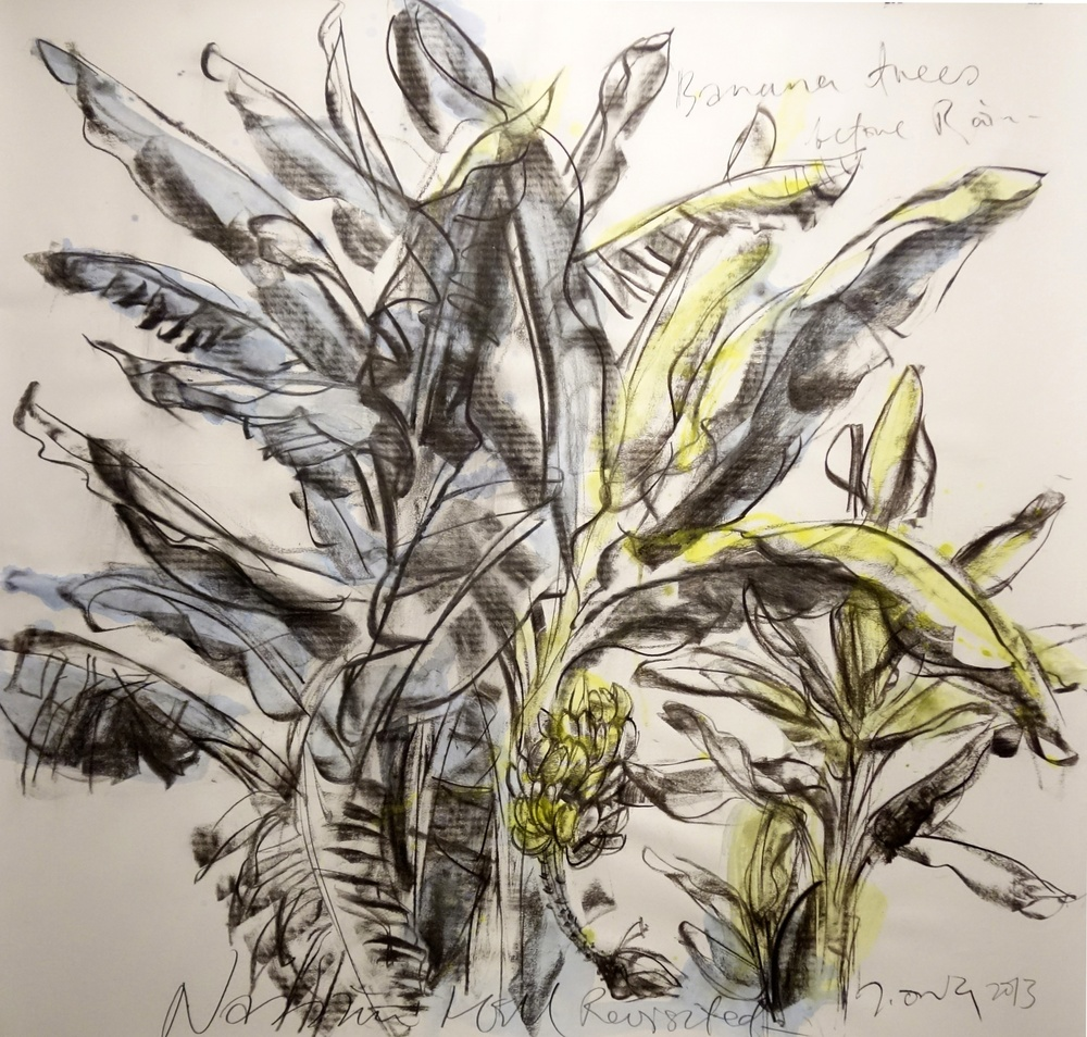 Banana Trees Before Rain  2013 Charcoal on paper approx. H116 x W117 cm