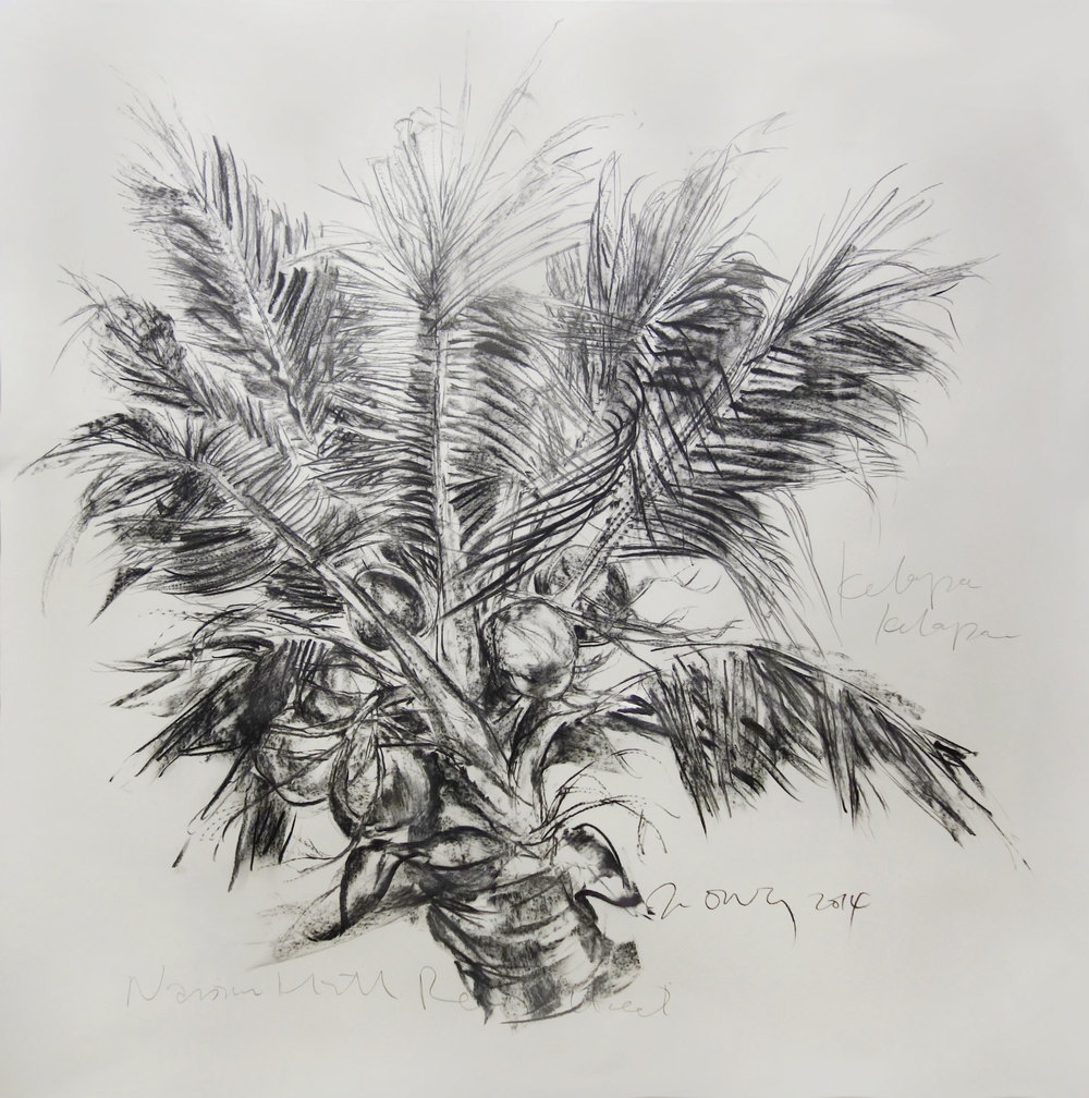 Jimmy ONG  Kelapa Kelapan  2014 Charcoal on paper 152 x 153 cm