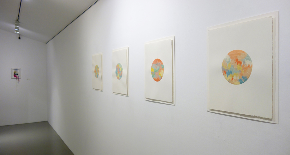 Installation View 6.jpg