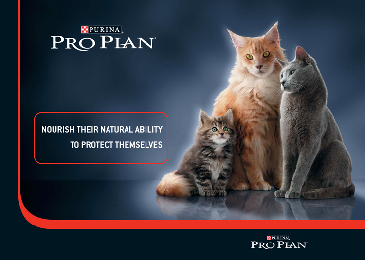 proplan_brochure_Page_01a.png
