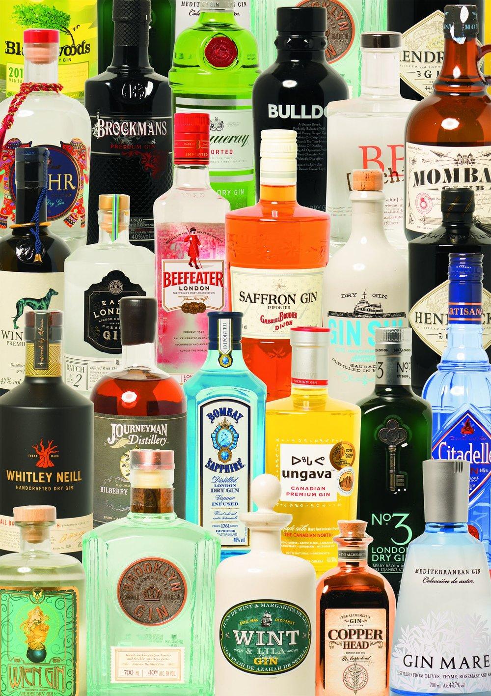 Taste of Gin (5494)