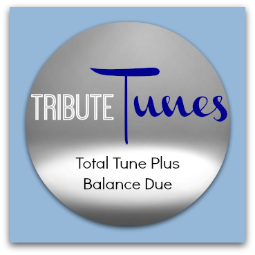 Total Tune Plus custom song balance due