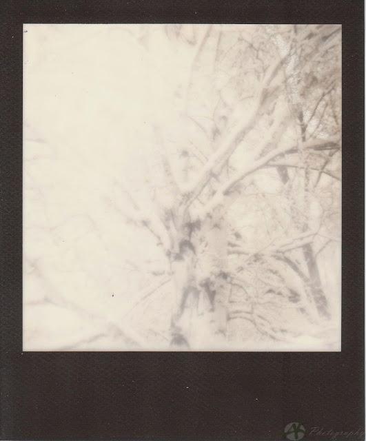 polaroidz_0001.jpg