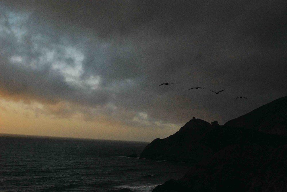 Cali32_SanFran_Sunset_BirdsWeb.jpg