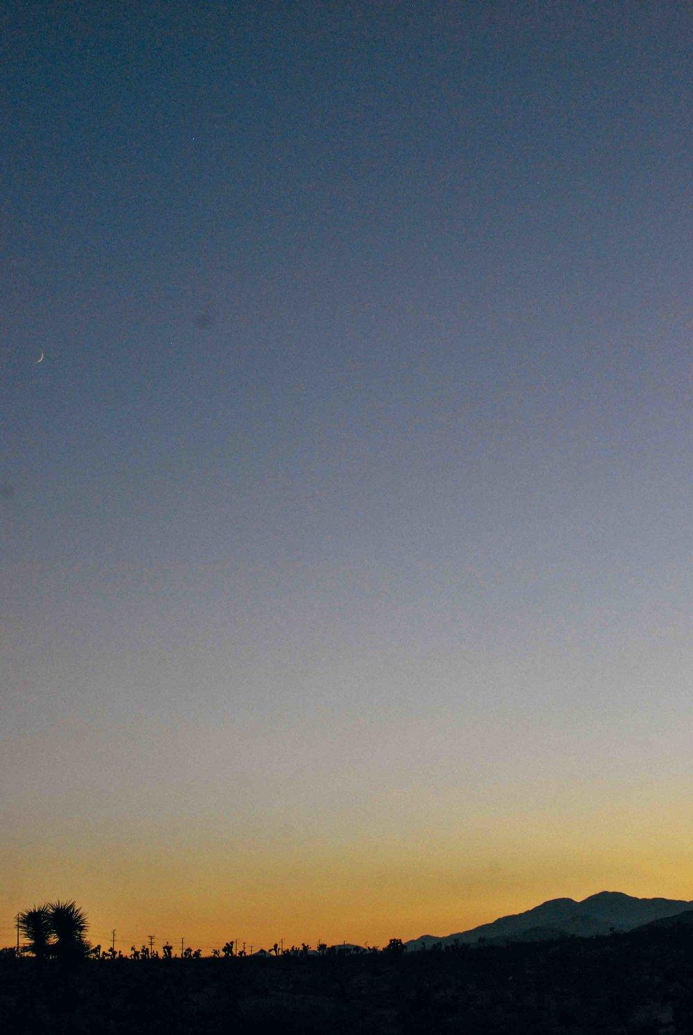 Cali39_Joshua_Tree_Pharos_SunsetWeb.jpg