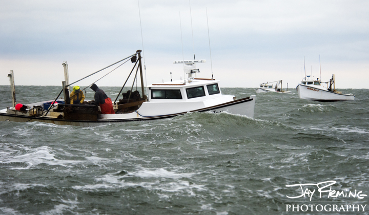 Tangier watermen dredging for oysters. Tangier Sound