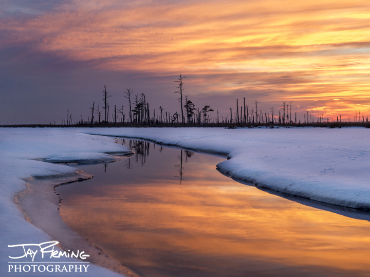 FrozenBlackwater River. Dorchester County, Maryland