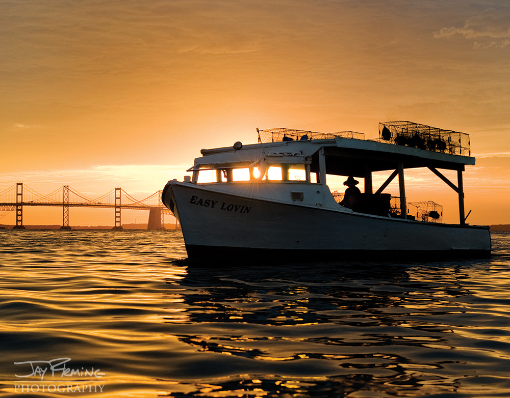 Chesapeake Bay Seafood@ Jay Fleming30.jpg