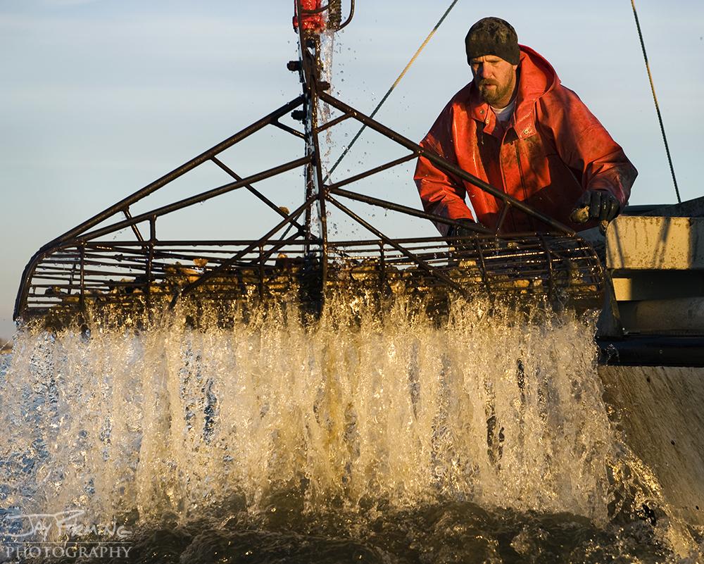 Chesapeake Bay Seafood@ Jay Fleming15.jpg