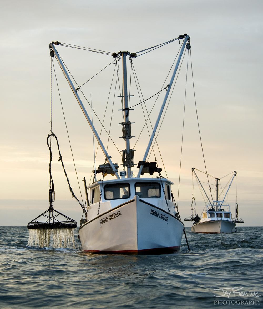 Chesapeake Bay Seafood@ Jay Fleming09.jpg
