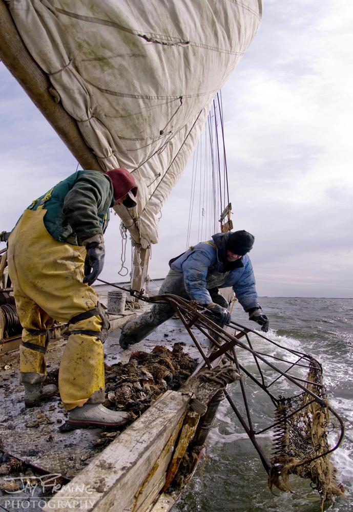 Chesapeake Bay Seafood@ Jay Fleming03.jpg