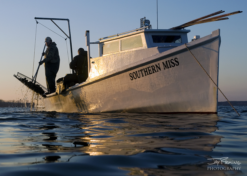 Chesapeake Bay Seafood@ Jay Fleming29.jpg