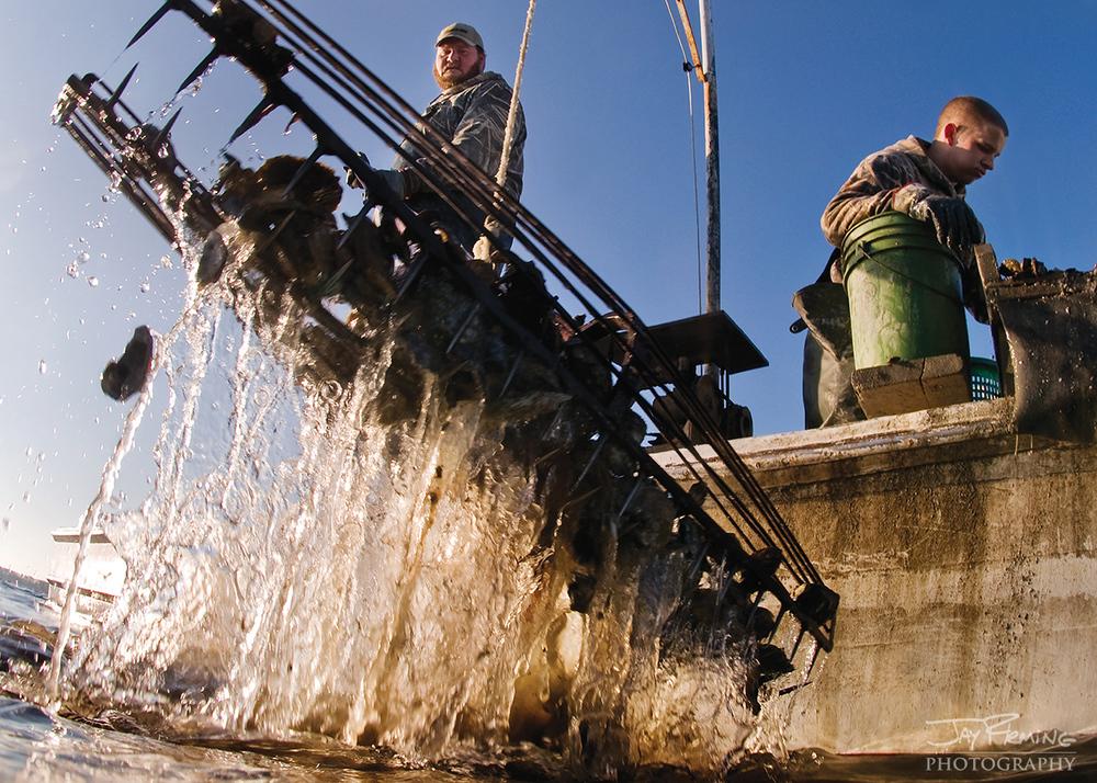 Chesapeake Bay Seafood@ Jay Fleming27.jpg