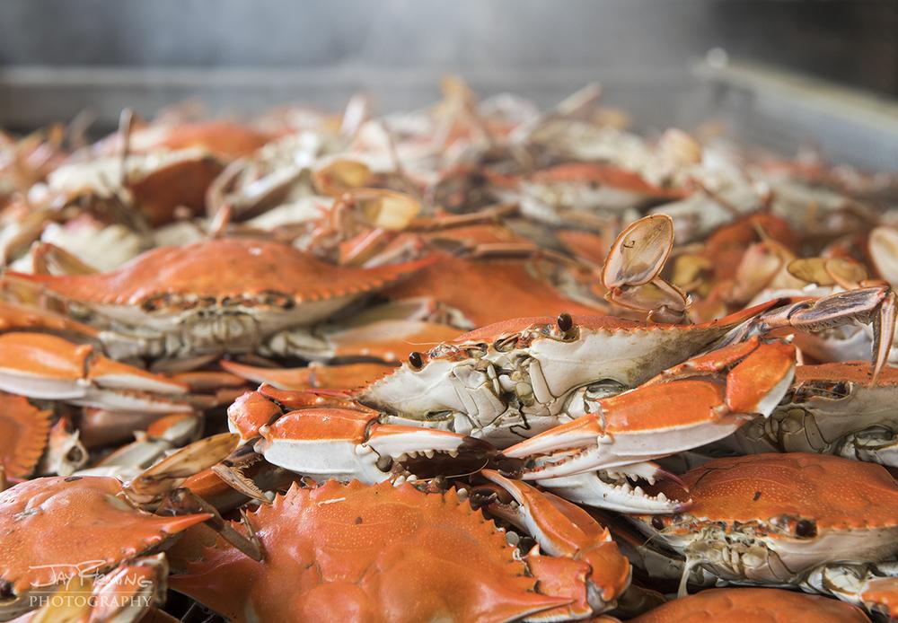 Chesapeake Bay Seafood@ Jay Fleming24.jpg