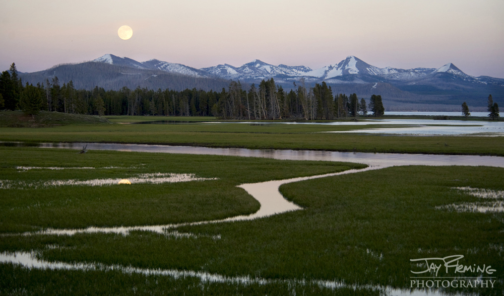 Yellowstone Portfolio © Jay Fleming 17.jpg