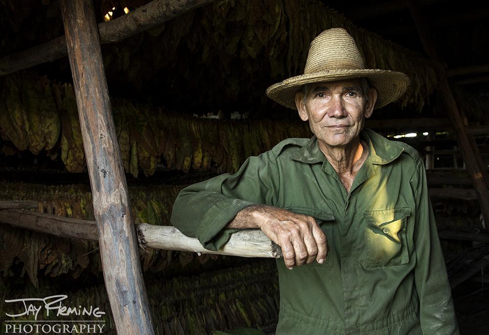 Farmer Juan Jose in his tobacco barn just outside of Pinar del Rio