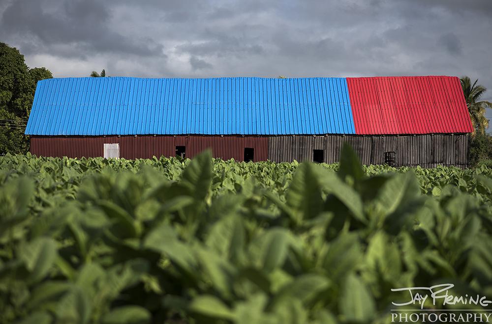 Tobacco barn just outside of Pinar del Rio