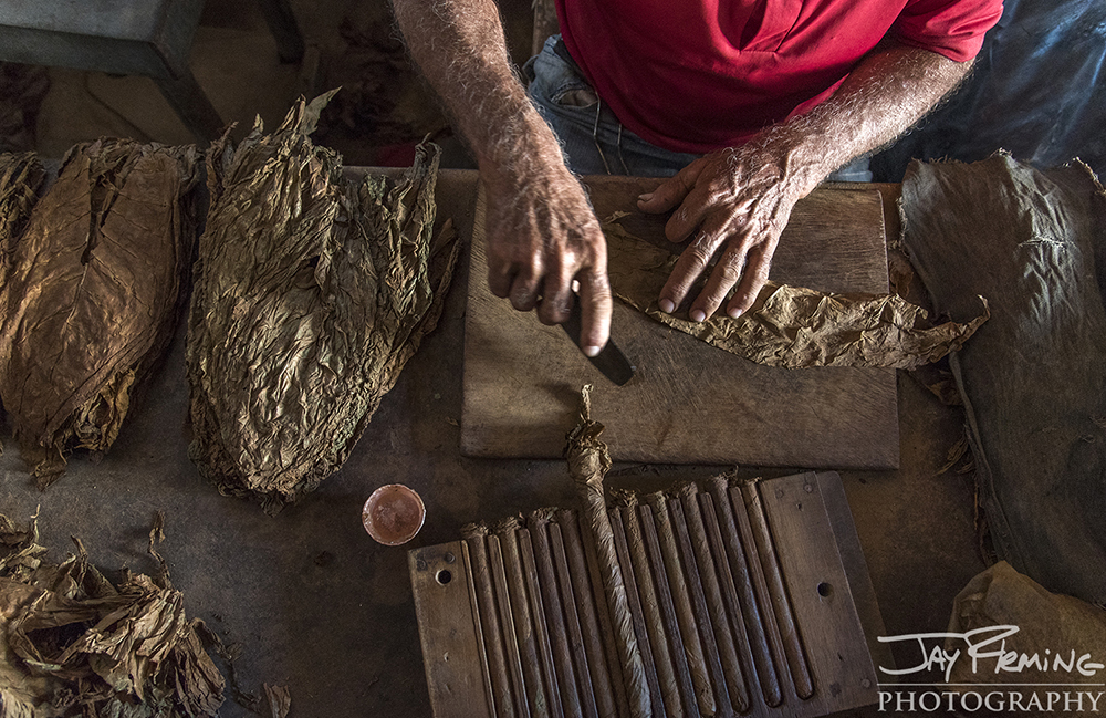 Rolling cigars at the Alejandro Robiano plantation. Pinar del Rio