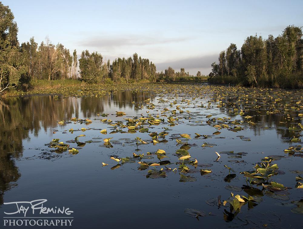 Laguna Del Tesoro