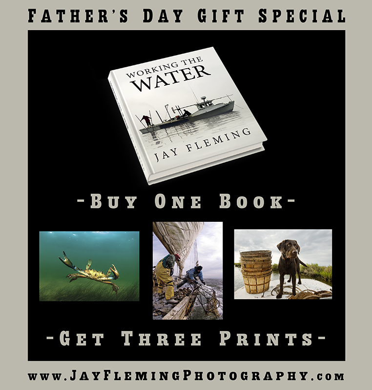 Father's Day 2017 Gift Special.jpg